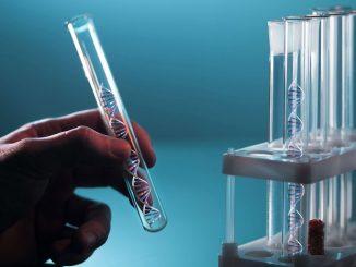 Экспертиза ДНК на отцовство
